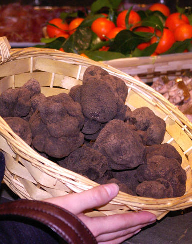 Fête de la truffe en Avignon