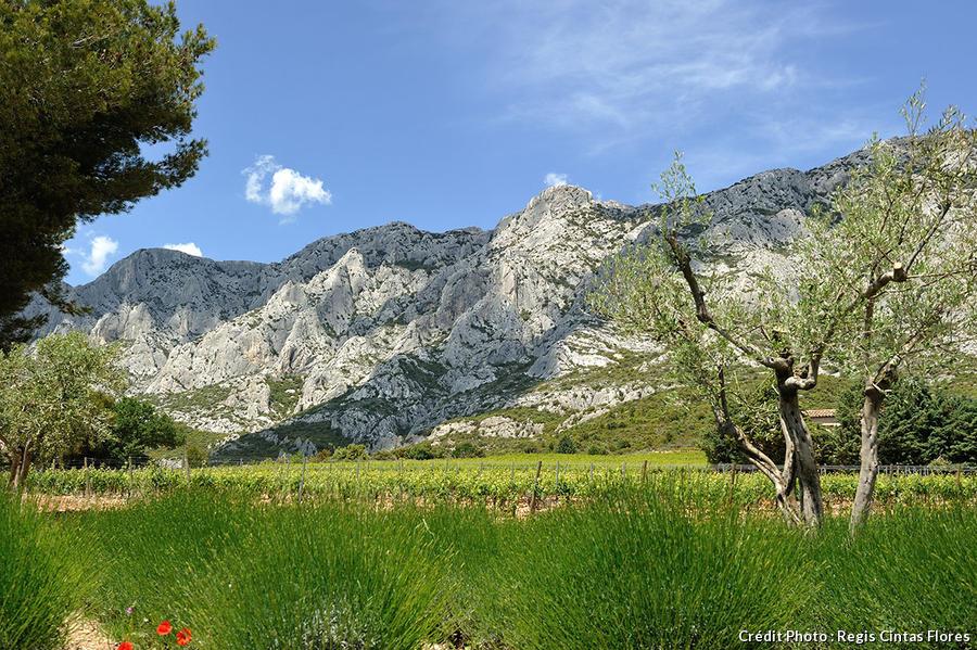 La montagne Sainte Victoire