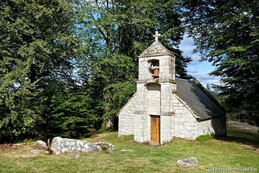 chapel-rat-12.jpg