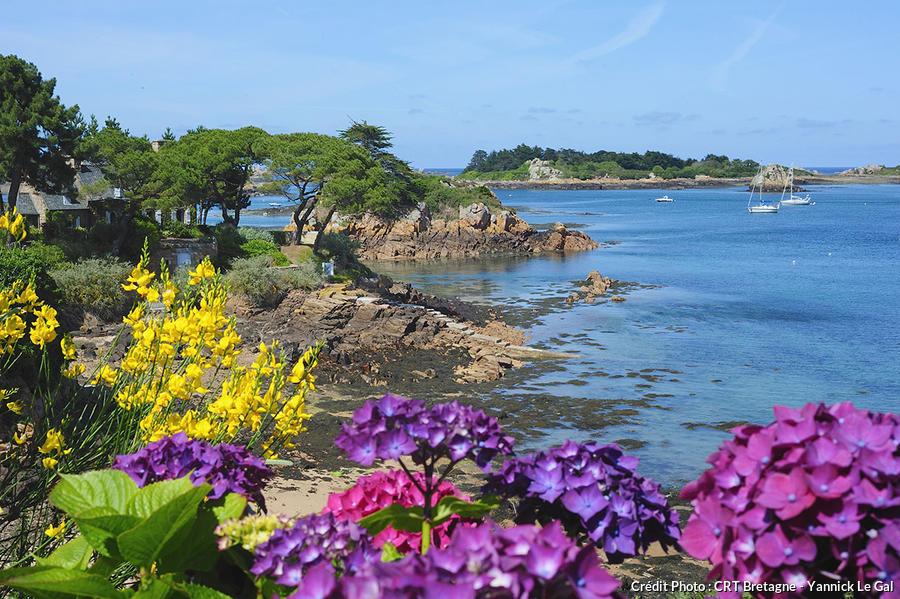 L 39 le de br hat c t jardin d tours en france for Jardin japonais en ile de france