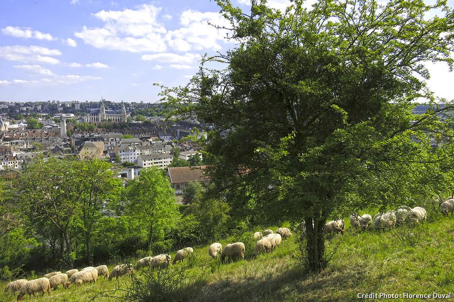 Evreux depuis les Coteaux Saint-Michel