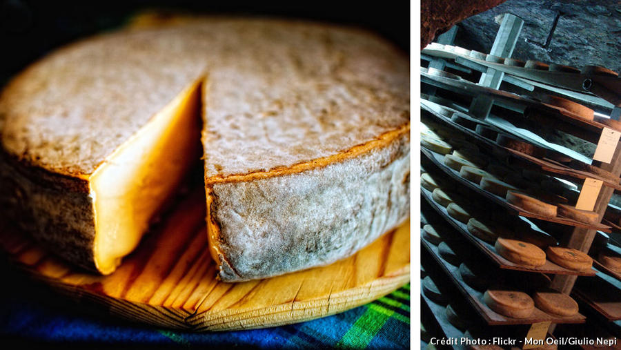 Fromage saint-nectaire