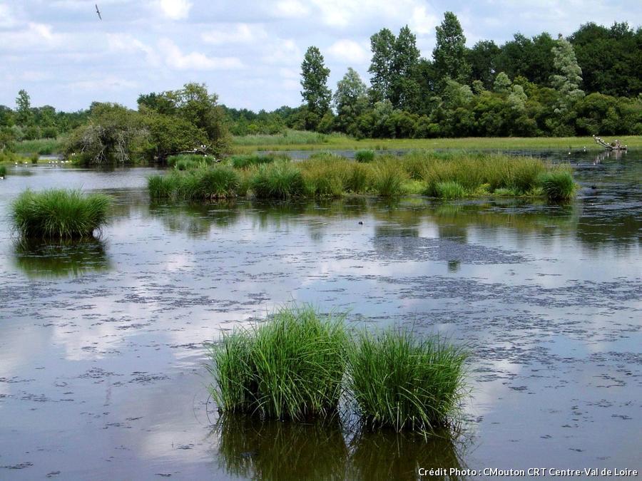 étang de la Brenne