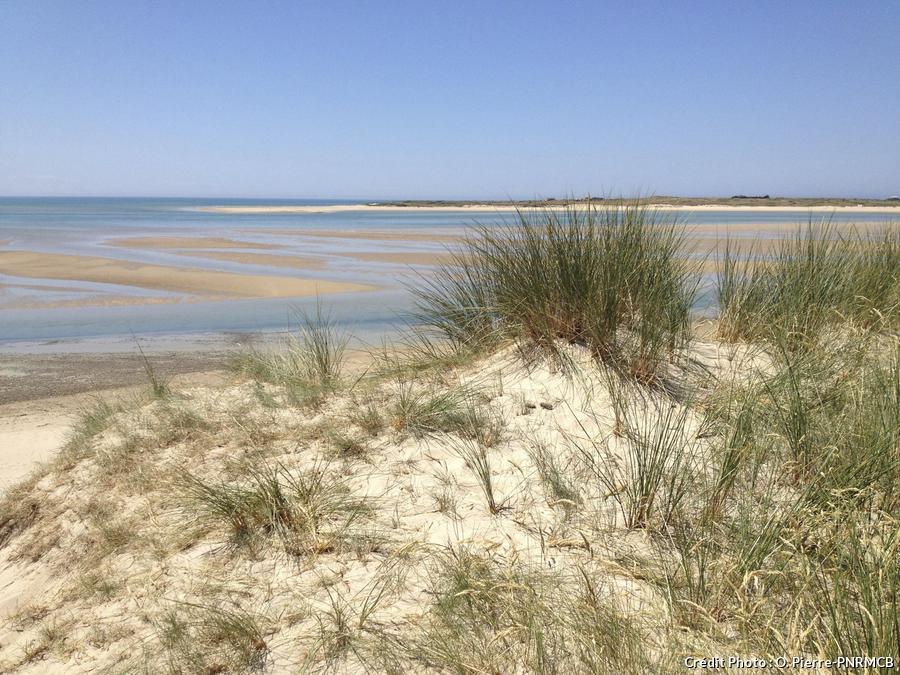 Marais du Cotentin et du Bessin