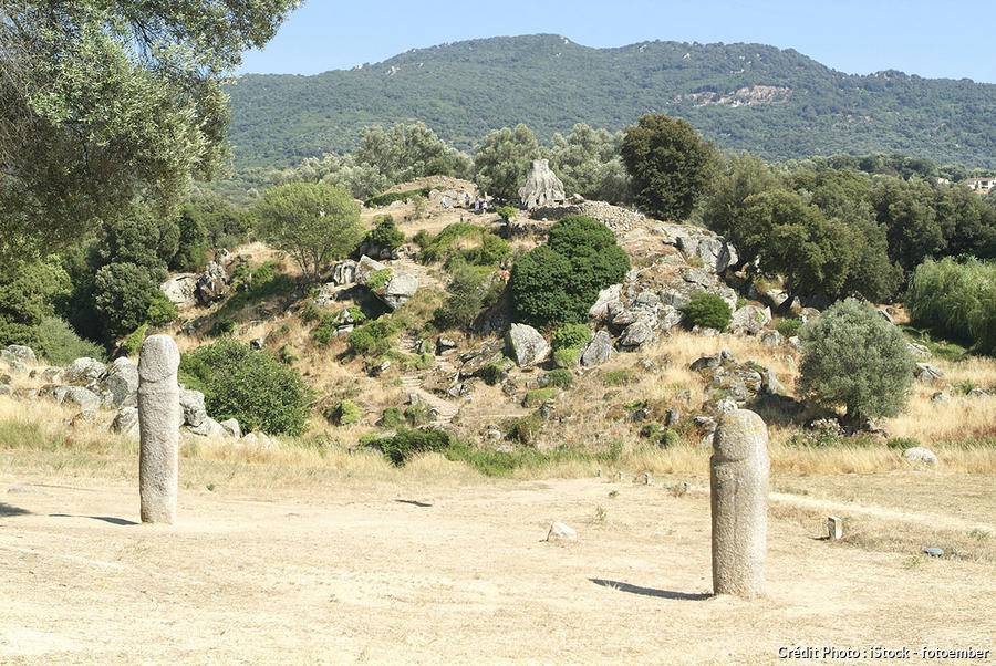 Statue-Menhirs