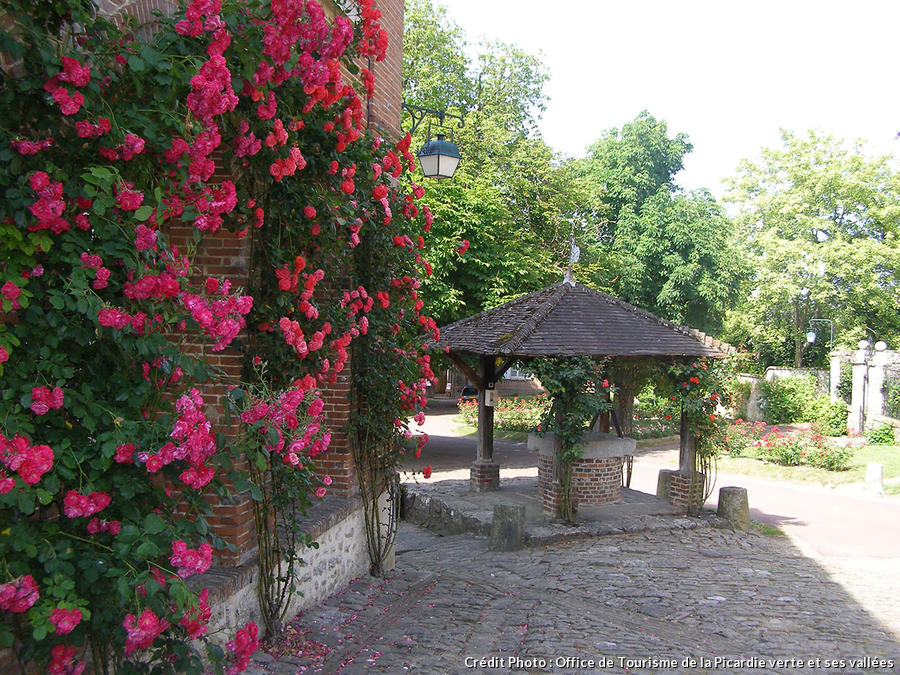 mon jardin fleuri la terrasse petit jardin fleuri la rochelle. Black Bedroom Furniture Sets. Home Design Ideas