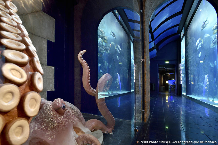 det_musee-oceanographique-monaco_musee-oceanographique.jpg