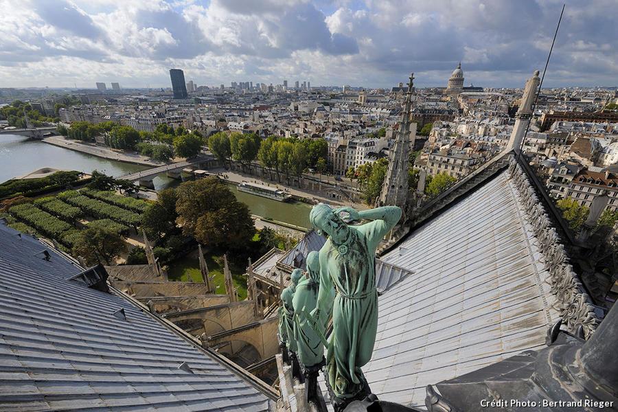 Vue de Paris depuis le sommet de Notre-Dame
