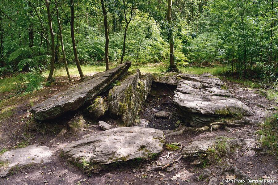 Forêt de Brocéliande - Le tombeau du géant