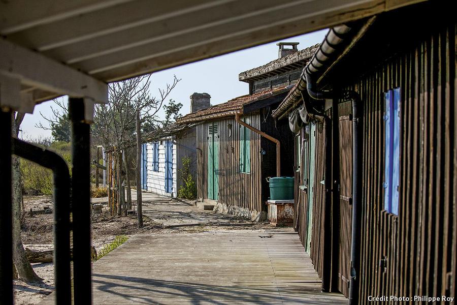 cabanes tchanquées - île aux oiseaux