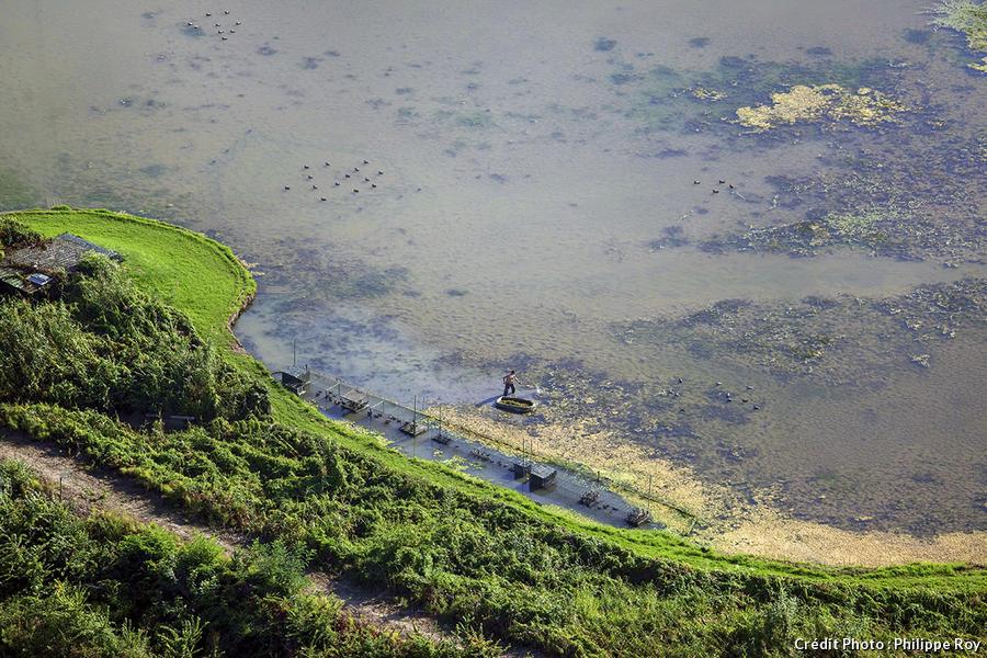 L'île Cazeau
