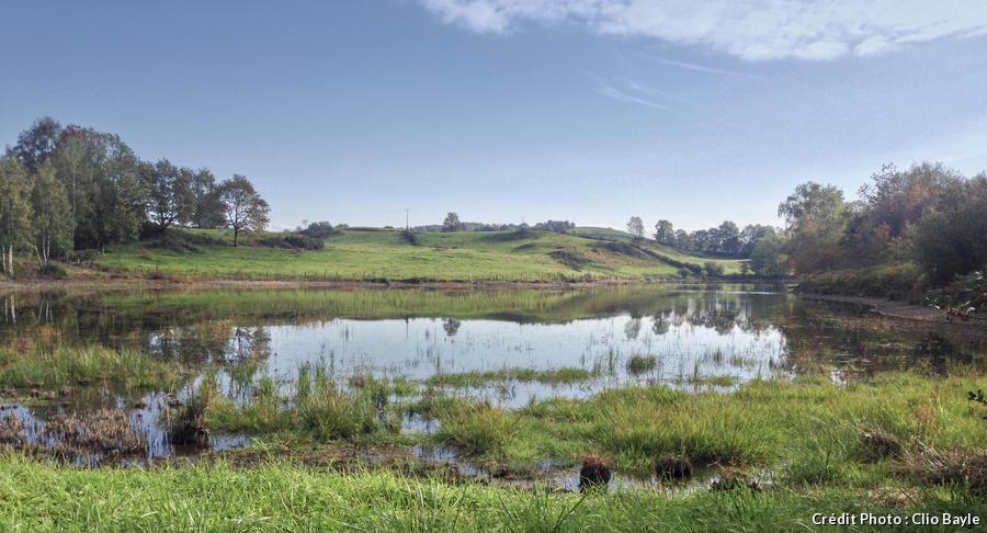 Un étang sur la plateau des Mille Étangs