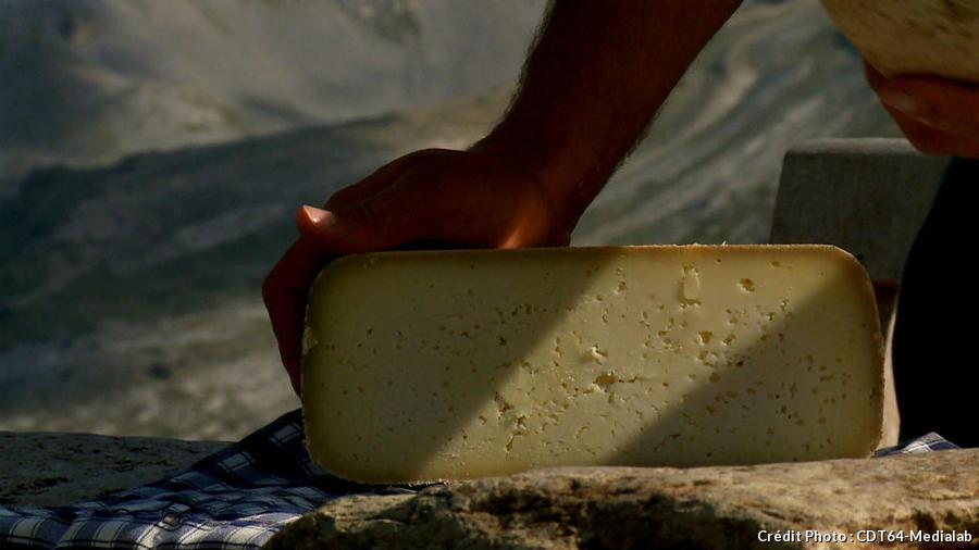 fromage de brebis en montagne
