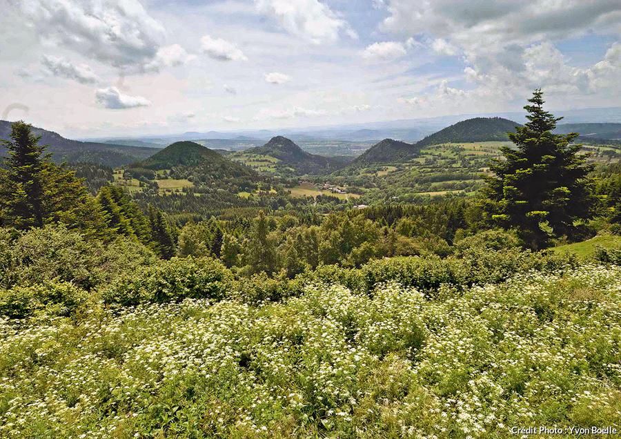 La Margeride, vaste plateau granitique ondulant à 1000 mètres d'altitude.