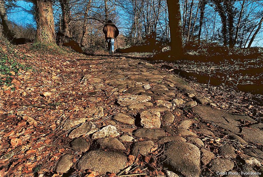 Sur le chemin de Saintonge, un pavage romain