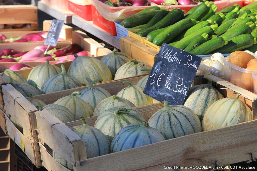 melon-vaucluse
