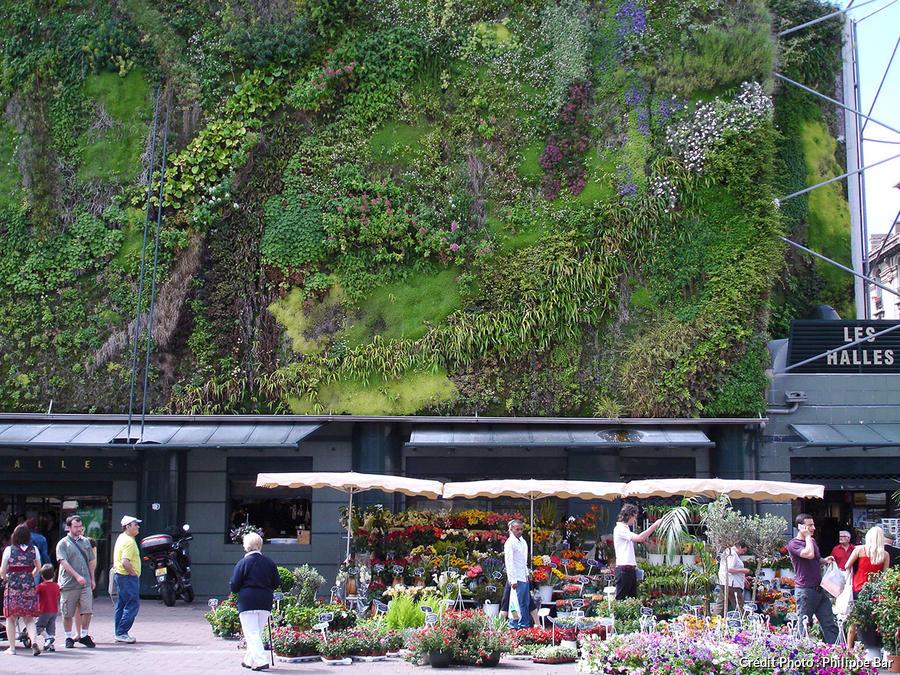 mur-vegetal-halles-Avignon