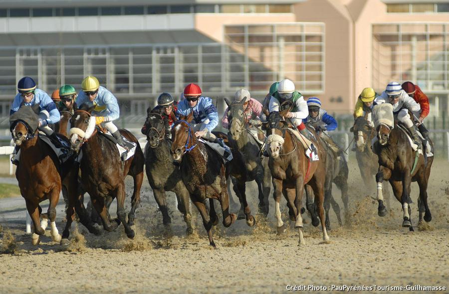 une course de chevaux à Pau