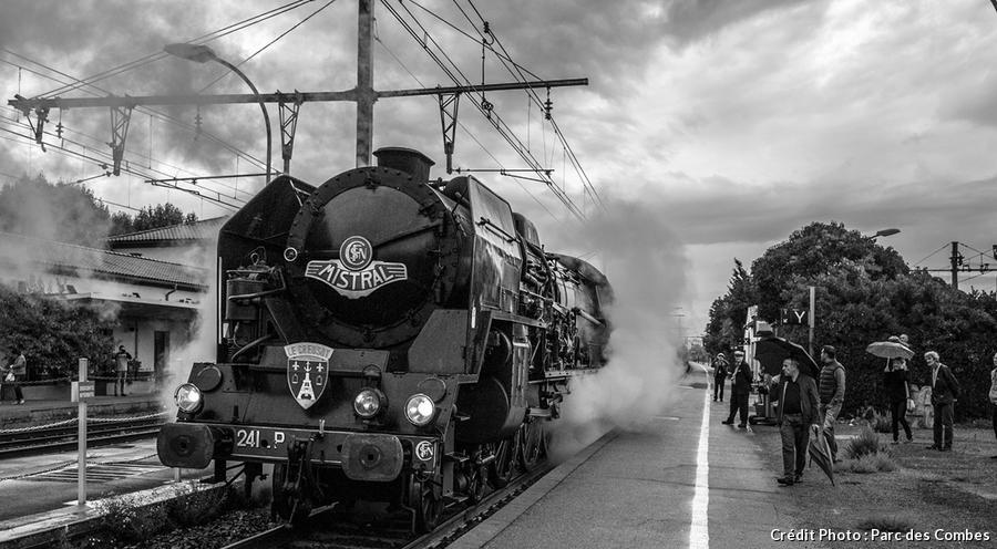 train-det_creusot_parc-des-combes