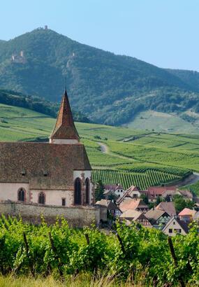 Les plus beaux villages dAlsace à visiter