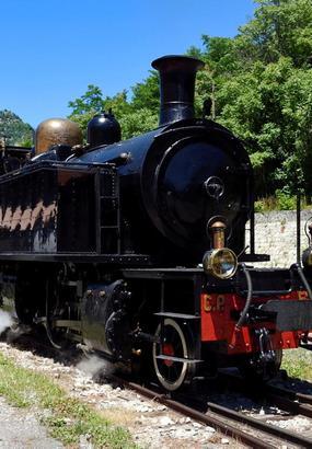 Le train des Pignes à toute vapeur