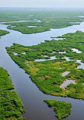 Le marais de Brière : la lagune mystérieuse