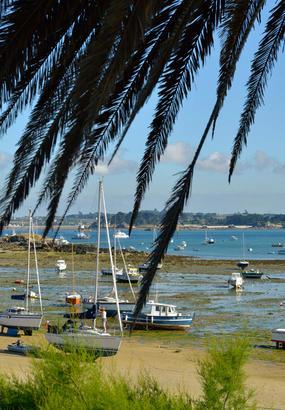 Batz, un jardin sur mer