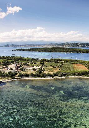 Lerins : des îles au goût de paradis