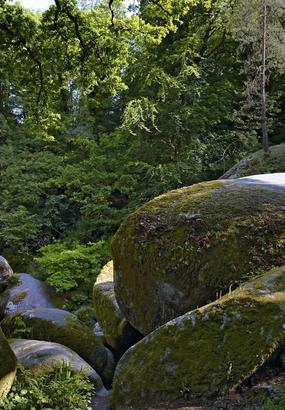 La forêt d'Huelgoat et ses légendes