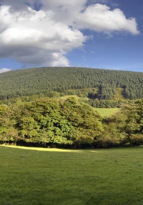 Le mont Beuvray et les forêts du Morvan
