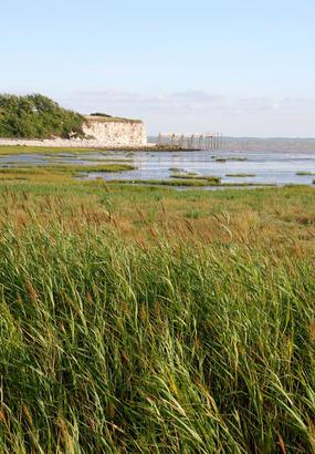 Talmont-sur-Gironde, une bastide sur lestuaire