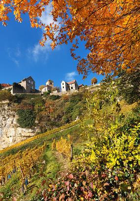 Sur les plus belles routes des vins de France