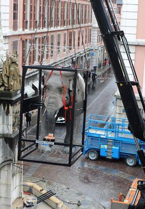 Chambéry : les Éléphants de la Fontaine font peau neuve
