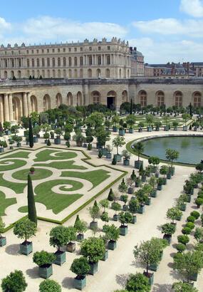 LOrangerie de Versailles : le temple des plantes du soleil