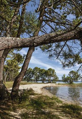 5 choses à faire autour des lacs et rivières des Landes