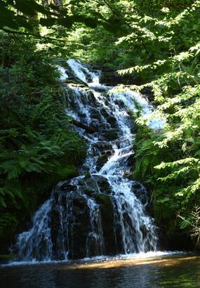 Les plus belles cascades des Vosges