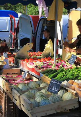 Escapade gourmande autour du melon de Cavaillon