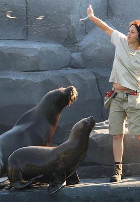 Devenez soigneur dun jour au zoo de Paris