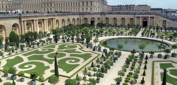 L'Orangerie : le temple des plantes du soleil