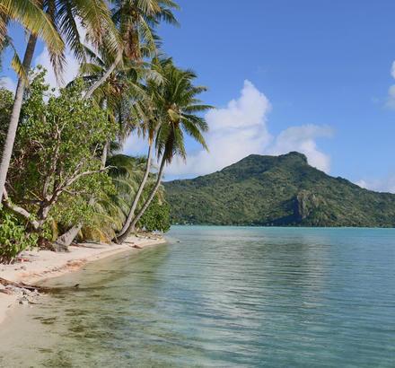 Paysage de plage et de montagne sur l'ile de Maupiti en Polynésie française