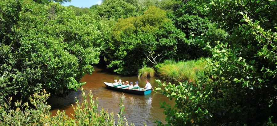 barque sur le courant d'Huchet