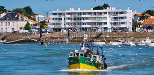 Saint-Gilles-Croix-de-Vie : la sardine en étendard