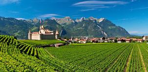 À la découverte des vins du canton de Vaud