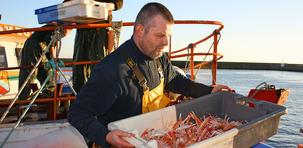 Les 5 spécialités culinaires du Finistère
