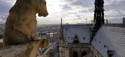 Le taureau debout de Notre-Dame