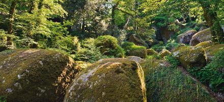 Boules de granit dans la forêt d'Huelgoat