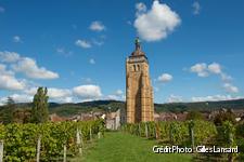 Clocher d'Arbois, face aux vignes