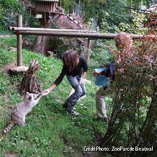 Soigneur d'un jour au zoo de Beauval